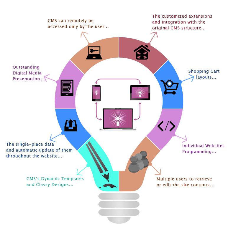 cms-services